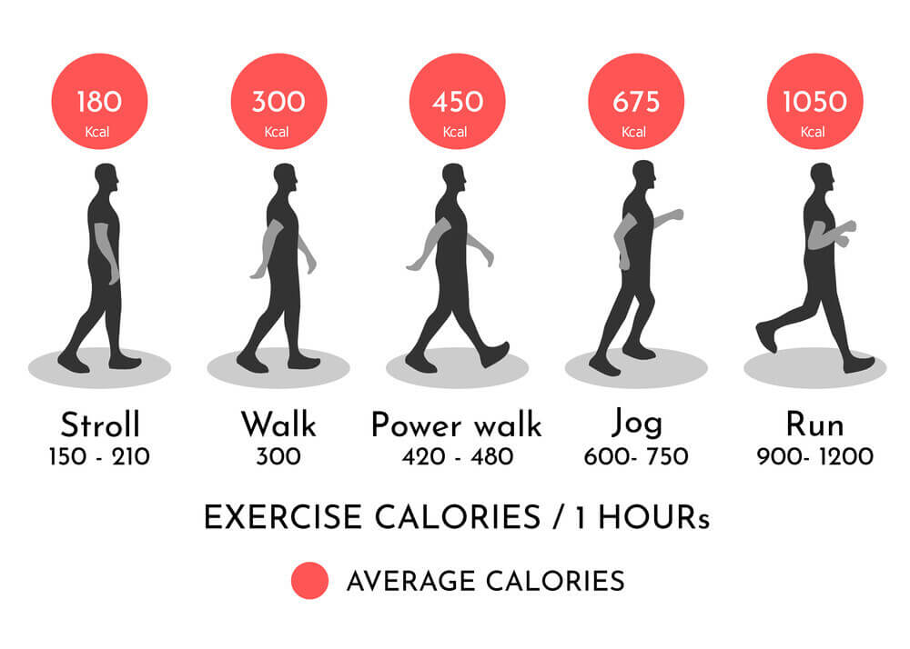 How many calories do I burn walking for an hour